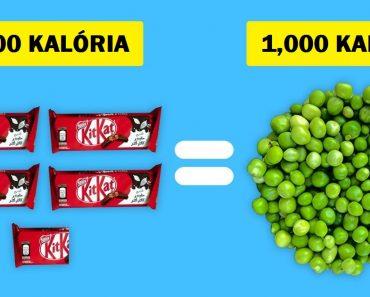 Hogy néz ki 1000 kalória a különböző ételekből