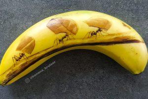 Egy lány banánokat használ vászonként, és műalkotásokat készít anélkül, hogy tintát vagy festéket használna